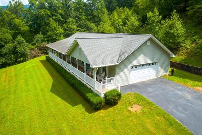 Hayesville Single Family Home For Sale: 95 Shadow Woods Trail