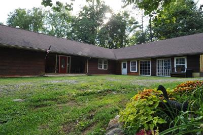 Hayesville Single Family Home For Sale: 51 Compass Creek Dr