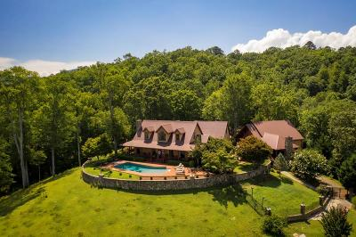 Robbinsville Single Family Home For Sale: 1948 Lower Tuskeegee Road