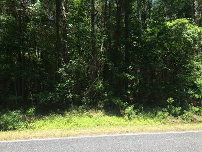 Beaufort Residential Lots & Land For Sale: 370 Russells Creek Road