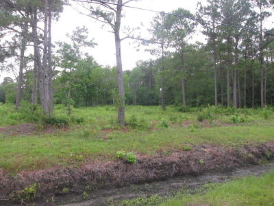 Smyrna Residential Lots & Land For Sale: 1021 Straits Road