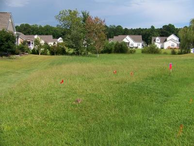 Swansboro Residential Lots & Land For Sale: 305 Duck Haven Court