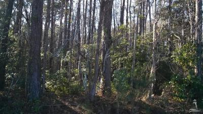 Havelock Residential Lots & Land For Sale: 70 Us Hwy 70 W