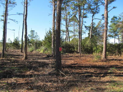 Sea Level Residential Lots & Land For Sale: 710 Highway 70