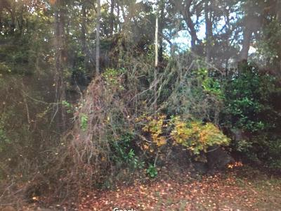 Pine Knoll Shores Residential Lots & Land For Sale: 113 Walnut Circle