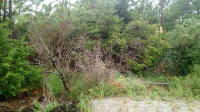 Harkers Island Residential Lots & Land For Sale: 213 Oak Hammock Drive