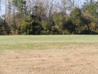 Whiteville Residential Lots & Land For Sale: 387 Waterfall Drive