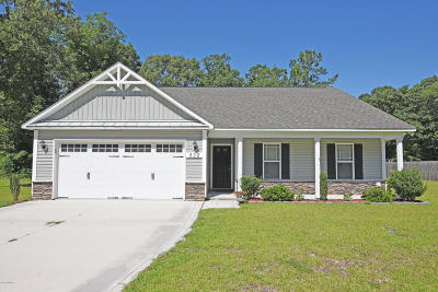 richlands Single Family Home For Sale: 232 Long Neck Drive