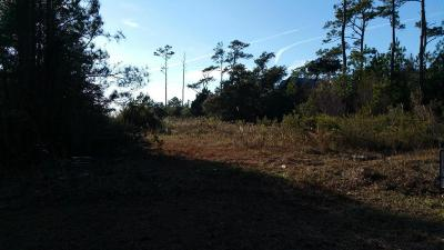Stacy Residential Lots & Land For Sale: 180 Stacy Loop Road