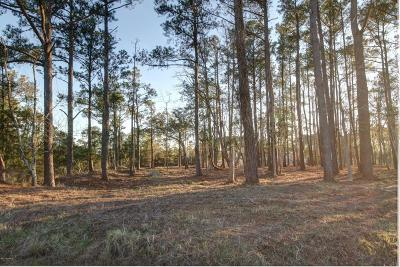 Beaufort Residential Lots & Land For Sale: 112 Ashley Lane