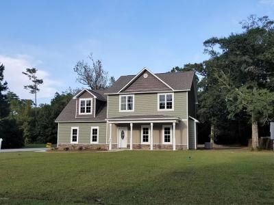 Sneads Ferry Single Family Home For Sale: 201 Anchor Lane