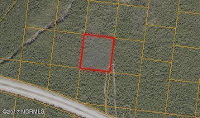 Leland, Castle Hayne, Wilmington, Hampstead Residential Lots & Land For Sale: 1900 Plantation Road