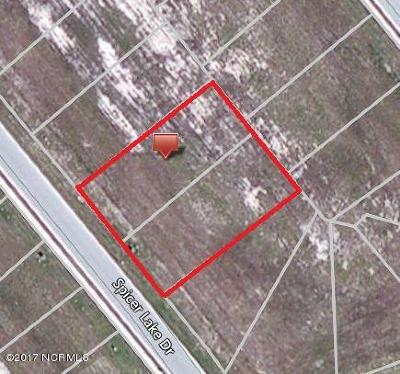 Residential Lots & Land For Sale: 169-71 Spicer Lake Drive
