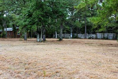 Harkers Island Residential Lots & Land For Sale: 179 Lewis Street