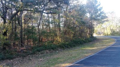 Leland, Castle Hayne, Wilmington, Hampstead Residential Lots & Land For Sale: 924 N Seabreeze Road