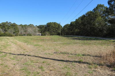 Beaufort Single Family Home For Sale: 207 Gooding Road