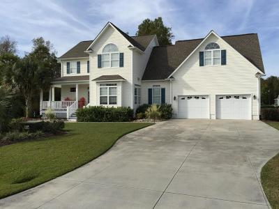 Swansboro Single Family Home Active Contingent: 304 Duck Haven