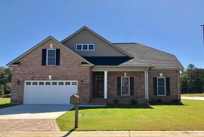 Winterville Single Family Home For Sale: 500 Becky Anne Drive