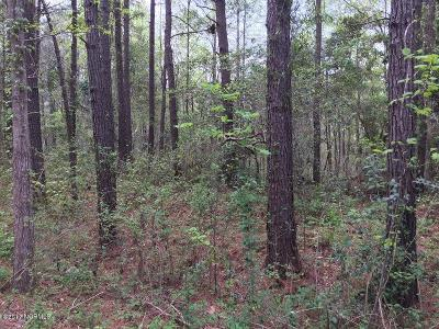 Sneads Ferry Residential Lots & Land For Sale: 111 Bayside Drive