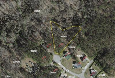 Onslow County Residential Lots & Land For Sale: 238 Chaparral Trail