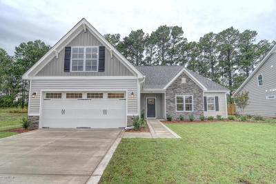 Castle Hayne Single Family Home For Sale: 3741 Stormy Gale Place