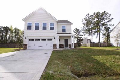 Jacksonville Single Family Home For Sale: 305 Vilas Way S