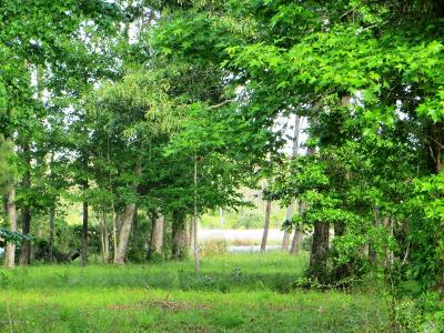 Residential Lots & Land For Sale: 168 Herring Pond Court