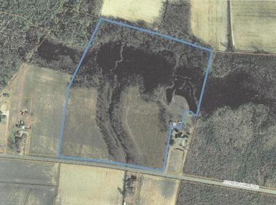 Residential Lots & Land For Sale: S-45 Joyner Swamp