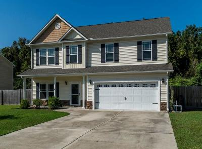 Swansboro Single Family Home For Sale: 445 Patriots Point Lane
