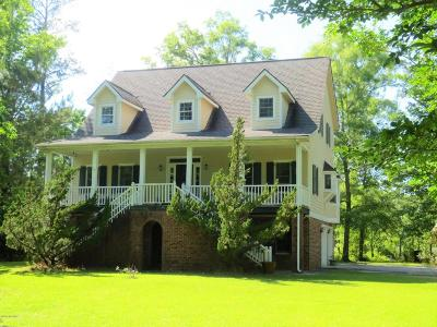 Beaufort Single Family Home For Sale: 228 Jonaquins Drive