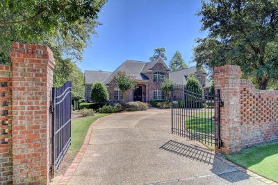 Wilmington Single Family Home For Sale: 415 Marshland Drive