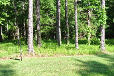 Beaufort NC Residential Lots & Land For Sale: $52,000
