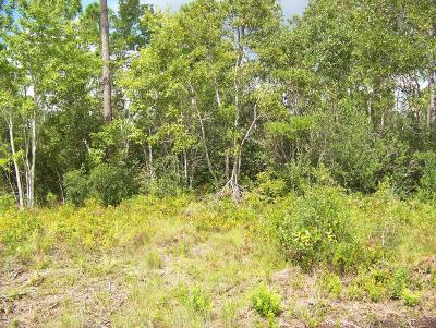 Boiling Spring Lakes Residential Lots & Land For Sale: 400 W West Boiling Spring Road