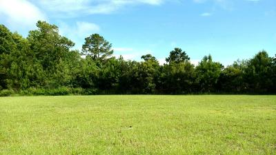 Beaufort Residential Lots & Land For Sale: 111 Snap Dragon Circle