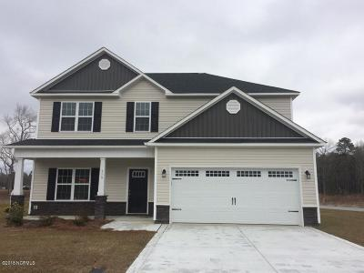 Turkey Ridge Single Family Home For Sale: 319 Strut Lane