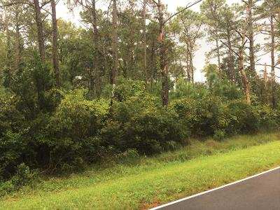 Beaufort Residential Lots & Land For Sale: 885 Crow Hill Road