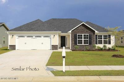 Sneads Ferry Single Family Home For Sale: 300 Topside Drive