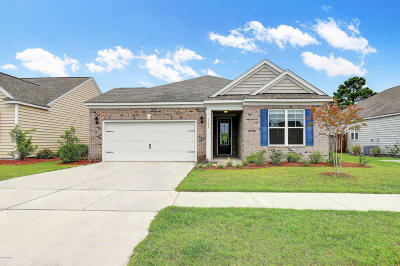 Wilmington Single Family Home For Sale: 7463 Chipley Drive