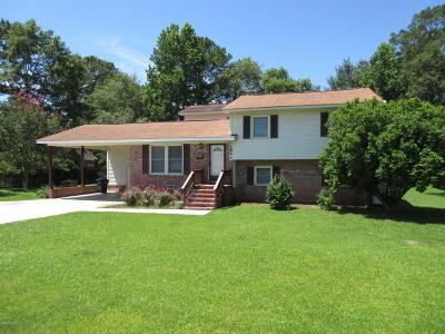 Jacksonville Single Family Home For Sale: 294 Piney Green Road
