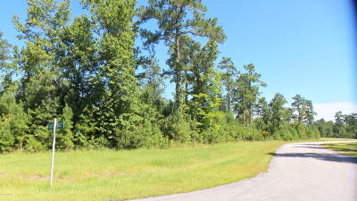 Residential Lots & Land For Sale: 196 Shady Creek Road