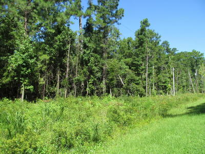 Beaufort NC Residential Lots & Land For Sale: $5,000