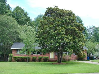 Jacksonville Single Family Home For Sale: 720 Gardenview Drive