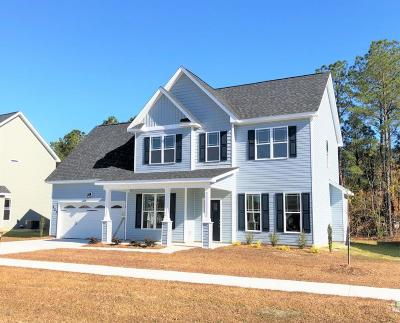 Jacksonville Single Family Home For Sale: 223 Dairyfarm Road