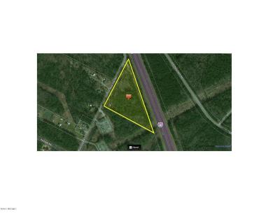 Leland, Castle Hayne, Wilmington, Hampstead Residential Lots & Land For Sale: 4800 Blue Clay Road