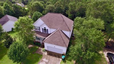 Sneads Ferry Single Family Home For Sale: 1619 Chadwick Shores Drive