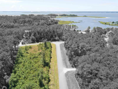 Beaufort Residential Lots & Land For Sale: 102 Queen Annes Lane
