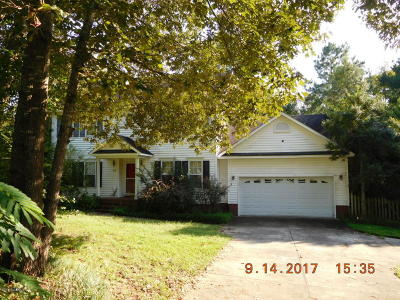 Richlands Single Family Home For Sale: 113 Grassy Pond Lane