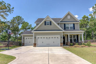 Sneads Ferry Single Family Home For Sale: 154 Snow Goose Lane