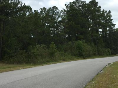 Richlands Residential Lots & Land For Sale: Ashbury Park Lane