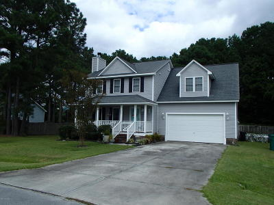 Sneads Ferry Single Family Home For Sale: 202 Egret Point Drive